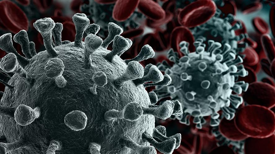 3d rendering of a microscope close-up of the novel coronavirus SARS-CoV-2. (Image: Creativeneko/123rf)