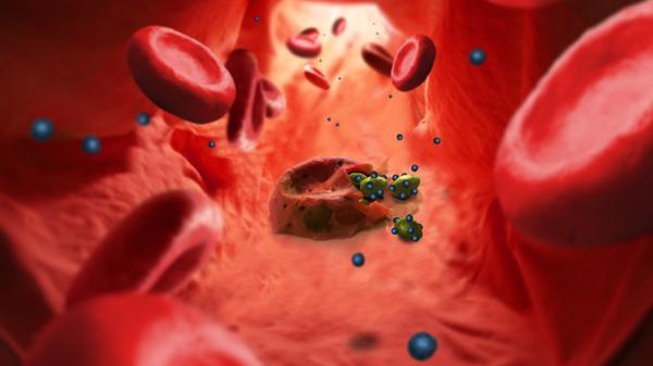 Nanotechnologie gegen Malaria